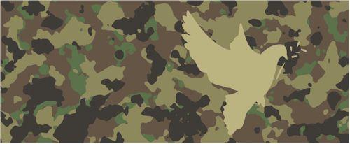 paz-armada